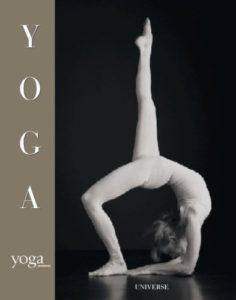 yoga david martinez